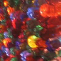 bonaroo2_thumbnail