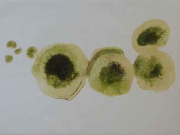 lichen monotype_web