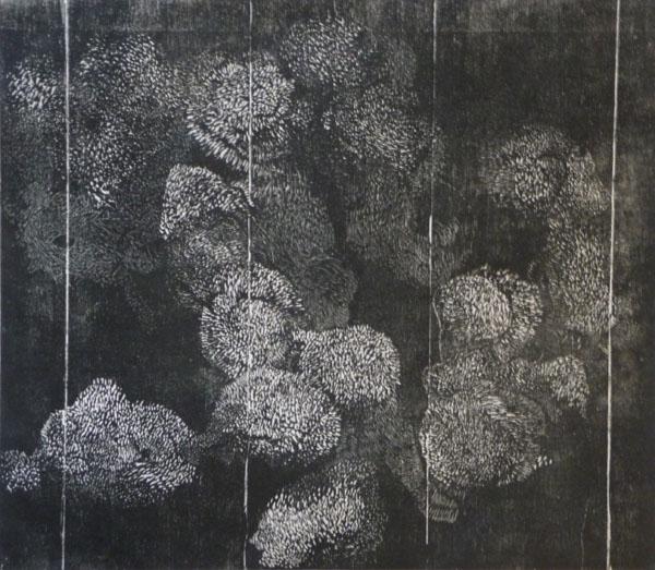 lichen woodcut_web